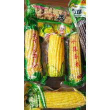 Fabricantes de bolsas de maíz de vacío