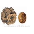 Großhandel Fabrik-versorgungsmaterial 100% Natural Black Cohosh Extrakt Pulver Triterene Glykoside 2,5%