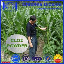 Uso Agrícola Polvo de Dióxido de Cloro Eficiente para la Esterilización del Suelo