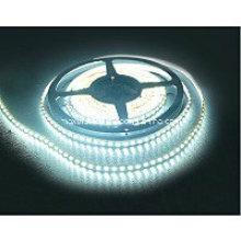 DC12V / 24V 8mm / 10mm 3528 120LEDs pro Meter LED-Streifen-Licht