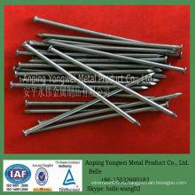 YW-- бриллиантовая точка общий железный гвоздь завод