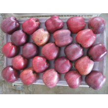 Wholesale fresh Huniu apple with good taste juicy and crisp apple fruit