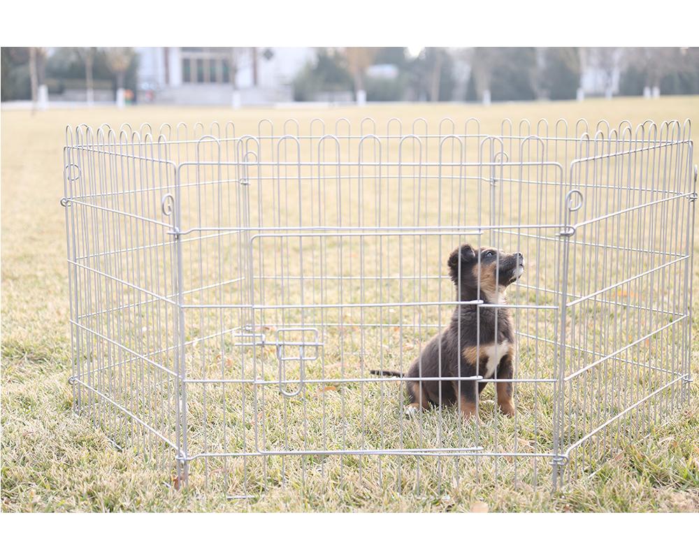 Dog Playpen-12