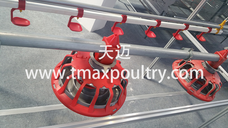 Feeding pan for Broiler