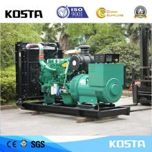 Excellent Power Output 325KVA Cummins Generator Price