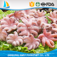 Chinesischer Lieferant Blumenart sauber gefroren leben frisch Baby octpus
