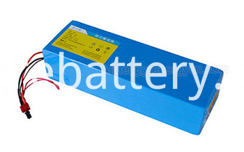 48V 1000W Electric Bike Battery
