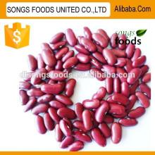 Heißer Verkauf rote Bohnen Produkte