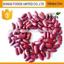 Hot sale red kidney beans products