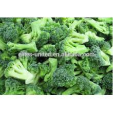 IQF légumes frais brocolis frais