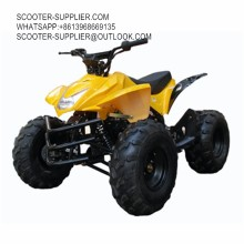 110cc Epa Atv For Kids