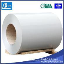 Folha / Bobina de aço laminado a frio SPCC