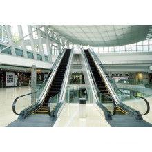 XIWEI High Quality Home Escalator Price