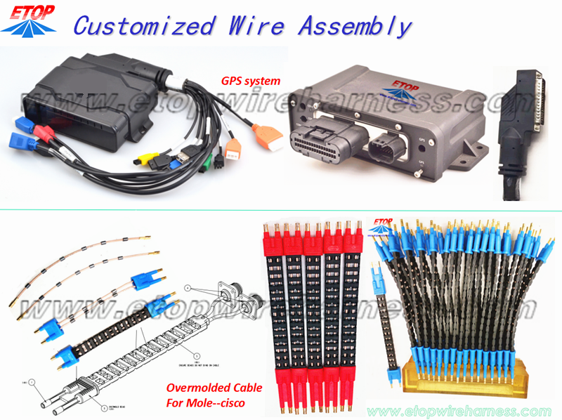 CUSTOMIZED WIRE HARNESS