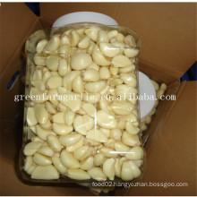 fresh peeled garlic bulk
