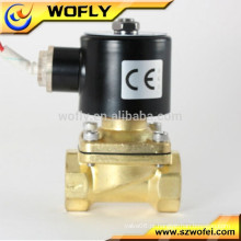 2W-250-25 Válvula solenóide de 220 volts