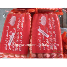 Shandong jining chinois ail blanc