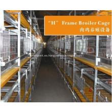 Sistema de jaulas para pollos para avicultura.
