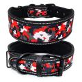 Soft Lining Padded Dog Collar