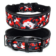 Soft Lining Padded Dog Collar