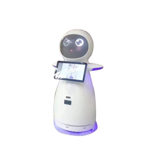 Artificial Intelligent Hotel Welcome Interactive Robot