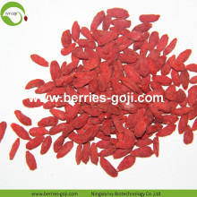 Factory Supply Natural Bulk Fruit Product Goji bär