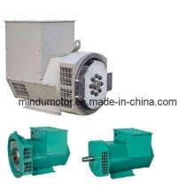 Einlagerung AC Brushless Generator / Generator (MDG / TFW)