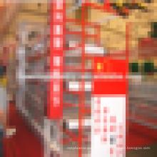Galvanizado / PVC jaulas de pollo automático, prueba de jaula de pollo / avícola