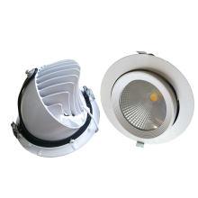 10W / 15W / 20W / 30W / 40W ajustable COB LED Trunk Down Light