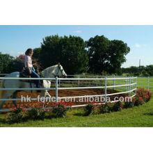Canetas de treinamento de cavalo galvanizado