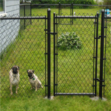 Chien Kennel Hot Inmersed Galvanized Usage Chain Link Fence
