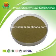 Most Popular Organic Raspberry Leaf Extract Powder