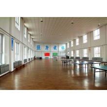 Ping-Pong Ball Court Sport Ahornholz Bodenbelag
