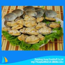 Wir liefern vor allem gefrorene, gekochte, kurzhalsige Muscheln in den überseeischen Markt