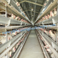 Poultry farm cage for chicken house