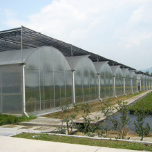 Agricultural Poly Multi-Span Arch PC Greenhouse