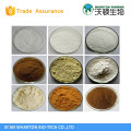 Alpha arbutin,Beta arbutin powder supplying