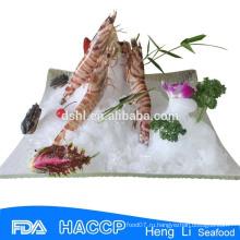 HL002 лучшие цены замороженные дикие замороженные свежие креветки полосатые креветки