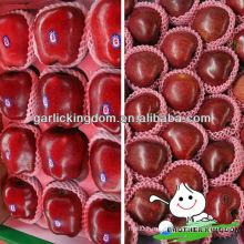Китай Тяньшуй свежее красное яблоко Хуаниу