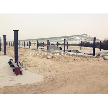 Poultry Farm Equipments Chicken Farm
