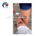 Yincai Henna Stencils Mehndi Style Waterproof Tattoo Sticker in Hot Sale Body Painting