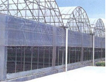 Steel structure greenhouse