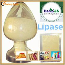 Habio Food Grade Lipase Enzym für Bäckerei, Mehl verbessern, Gerberei Industrie