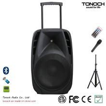 Sistema de som de 12 polegadas DJ Club PRO Audio