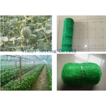Planting Support Net