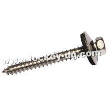 Stainless Steel 304 Hex Head Self-Tapping Screw with Boned Washer
