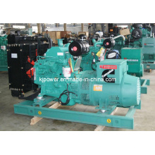 20kw Cummins Diesel Generator Set with Silent Canopy