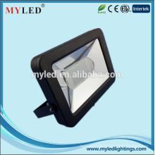 2015 Neuer Art Super-dünner WW NW CW 30W Hochleistungs-LED-Scheinwerfer / 30W LED Flutlicht