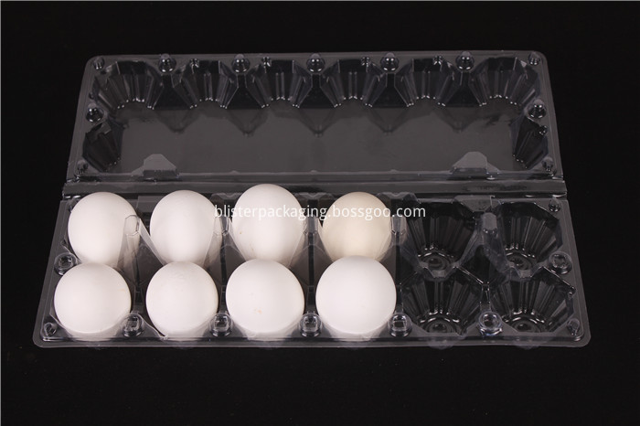 Blister Egg Packaging