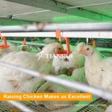 Sistema de aves de corral Tianrui Utilizado bebedor de pezones de pollo de engorde